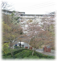 京都市北区の老人ホーム | 京都ヴィラ